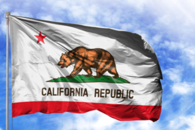 California State Flag 22